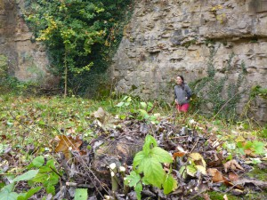 2016-10-29-steingrube-goetz-05