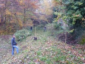 2016-10-29-steingrube-goetz-11