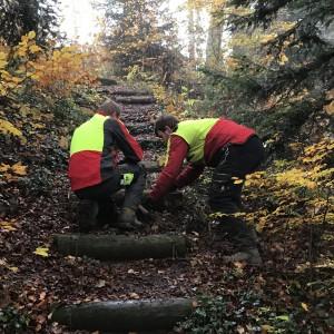 2016-10-29-stolten-tribelhorn-02
